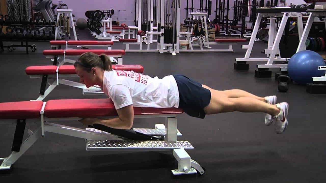 reverse hyperextension on bench